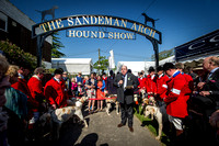 Ardingly Foxhounds 2015-3