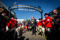Ardingly Foxhounds 2015-8