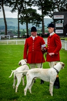 Builth Wells Hound Show 15-8