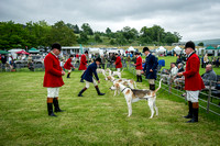 Builth Wells Hound Show 15-12
