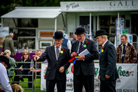 Builth Wells Hound Show 15-18