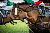 Wynnstay Point to Point 2016