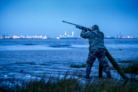 Wildfowling on the Humber