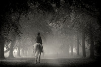 A few autumn hunting scenes with the Heythrop 2013