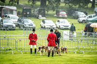 Lowther Hound Show 2017-2