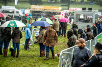 Lowther Hound Show 2017-3