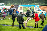 Lowther Hound Show 2017-27