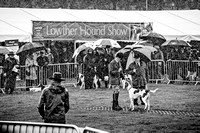 Lowther Hound Show 2017-13