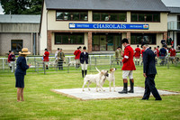 Builth Wells Hound Show 15-3